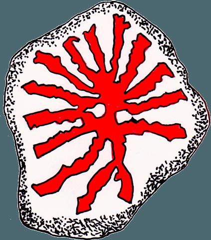 Jydernes logo